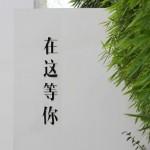和父母的闽南漫旅行之厦门篇,宵夜江湖吃个遍