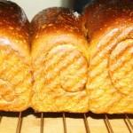 健康的全麦面包