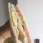 春游的三明治