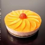 甜橙香芒慕斯蛋糕(乱入版)