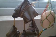 端午节传统母鸡带小鸡棕与吉祥蛋