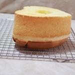 原味酸奶戚风蛋糕