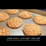 健康粗粮饼