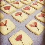 樱花小饼干