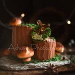 樹根蘑菇提前圣誕