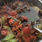 水煮盘锦河蟹或者大闸蟹
