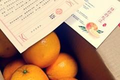 剥橙子剥脐橙的技巧