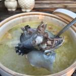 甲鱼汤的功效