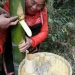 天然酵素--竹汁酒