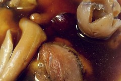 秘制黄精首乌母鸡汤
