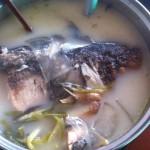 老上海风味花鲢粉皮鱼头汤