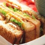 带着去郊游--春意三明治