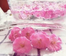 盐渍樱花🌸