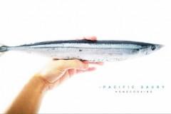 SANMAさんまPACIFIC SAURY鹽烤秋刀魚