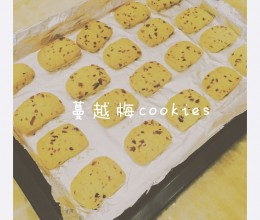蔓越梅cookies