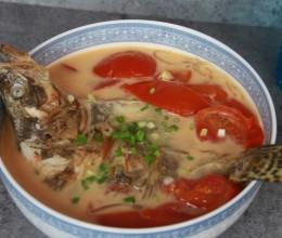 蕃茄炖桂鱼