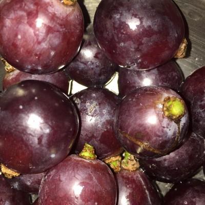 葡萄怎么洗