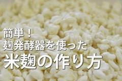 自制米麴(米曲)