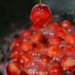 海棠果罐頭 果蜜 冰糖檸檬蜂蜜口味