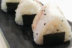 金枪鱼饭团🍙