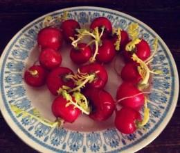 红红的水萝卜