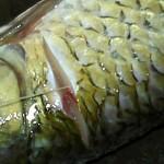 抽取魚腥線