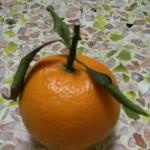 快速剥橙子