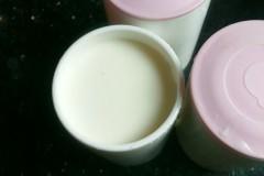 用奶粉自制酸奶
