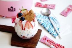 酸奶谷物杯-菌丝生活发酵剂