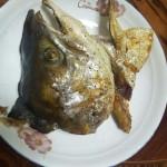 盐烧三文鱼鱼头