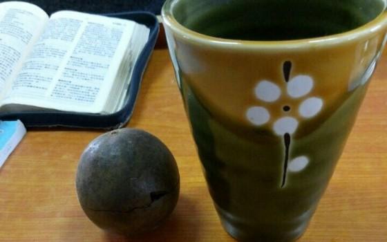 罗汉果的做法大全_罗汉果奶茶的做法【图解】_罗汉果奶茶的家常做法_罗汉果奶茶 ...