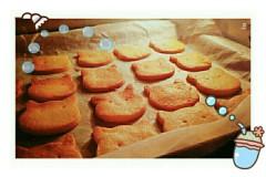小猫曲奇饼干
