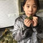 清明节艾叶粑(九岁儿童版)