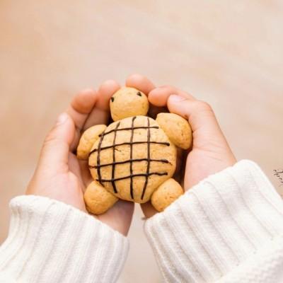 小乌龟花生曲奇饼干