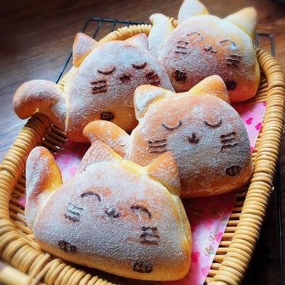 猫咪豆沙包